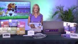 National Pet Month with Kristen Levine