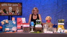 P'AWESOME HOLIDAY GIFTS FOR PETS