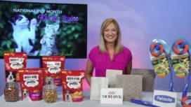 Wizard of Paws Kristen Levine on National Pet Month
