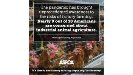 ASPCA Farm Animal Welfare